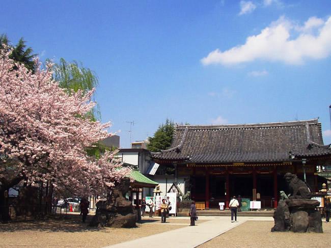 エリカおすすめ挙式神社-浅草神社