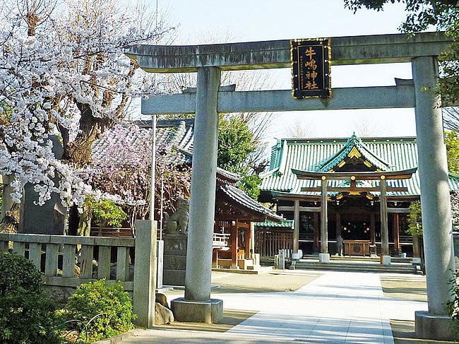 おすすめ挙式神社-牛島神社